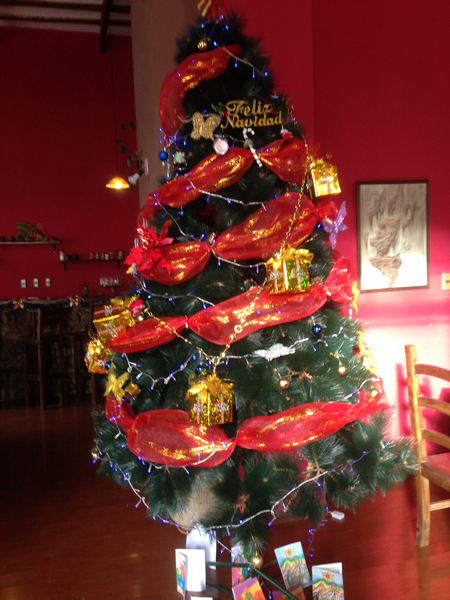 Christmas Tree in Sucre