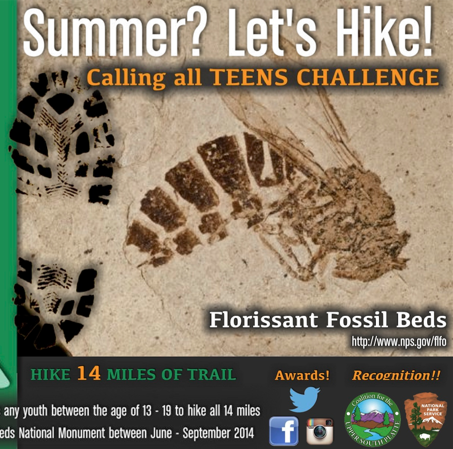 Trail 4 Teens Contest