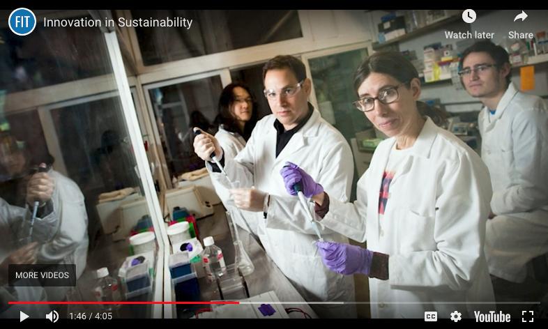 screenshot of Sustainability video
