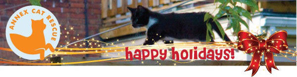 Happy Holidays from Annex Cat Rescue
