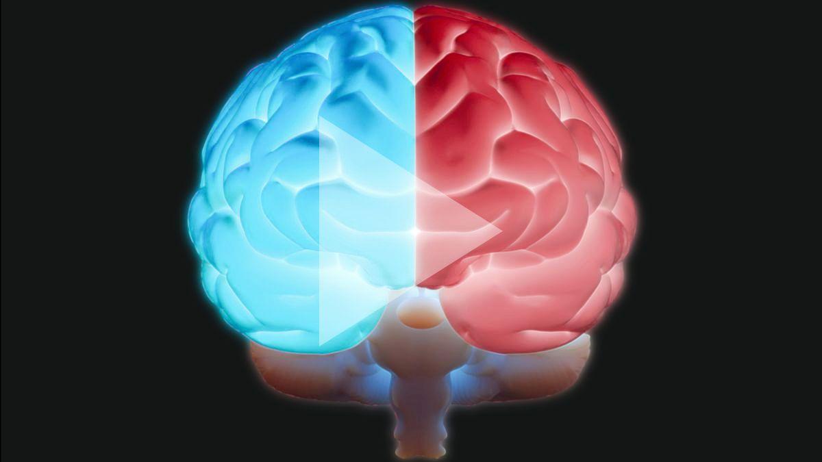 red blue brain