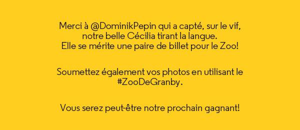 Soumettez vos photos avec le #ZooDeGranby