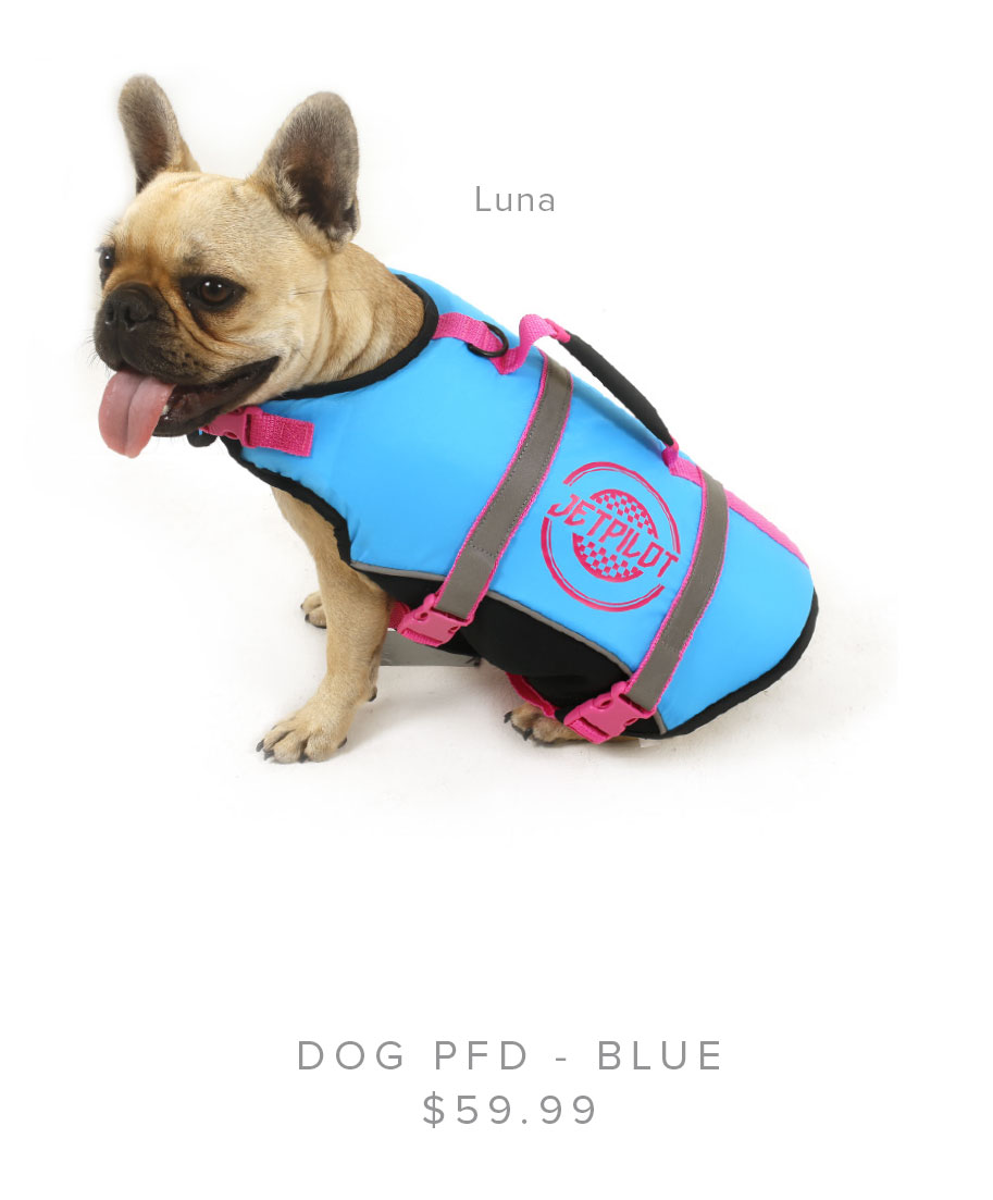 JETPILOT DOG PFD - BLUE
