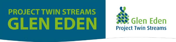 Project Twin Streams Glen Eden