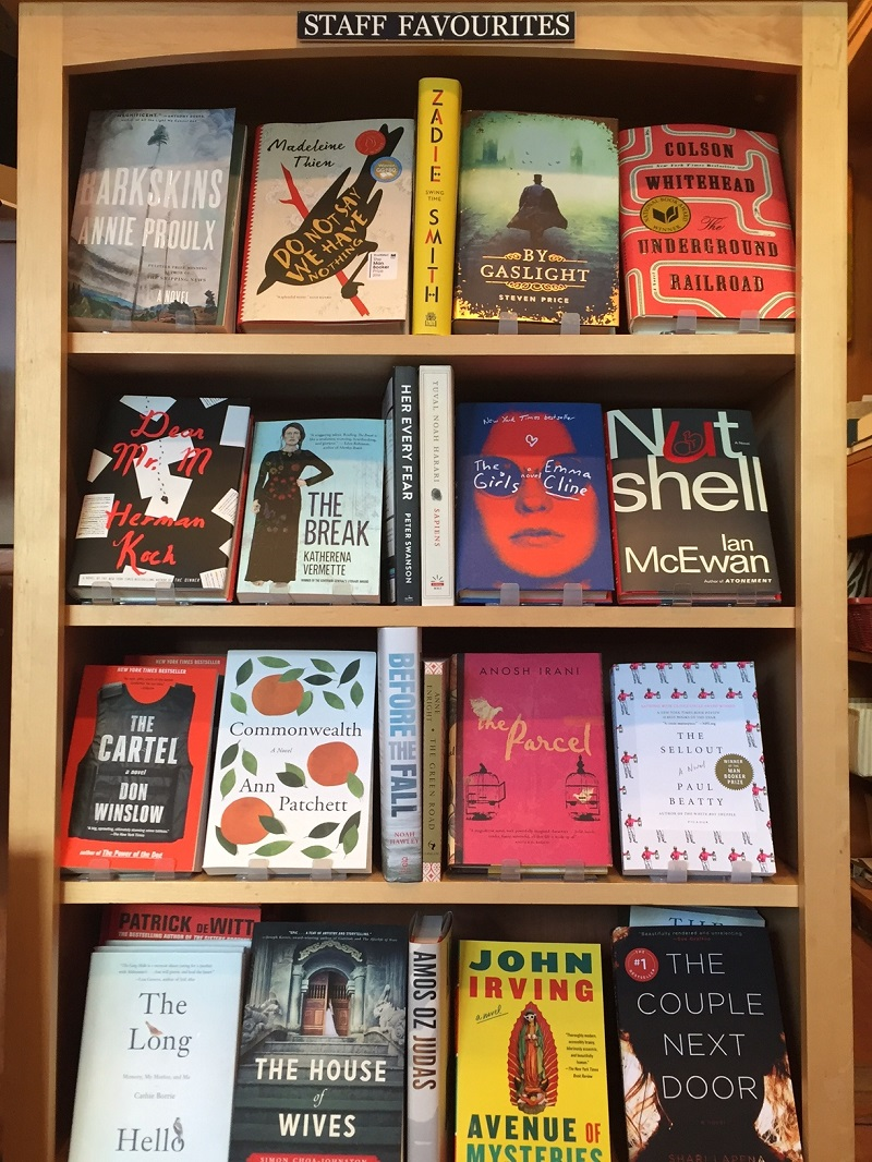 Jem the bookstore dog