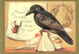 Crow by CVS
