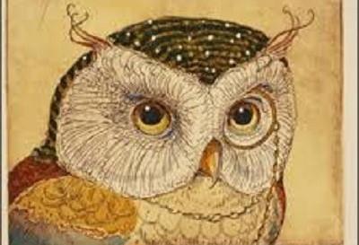 Owl by CVS