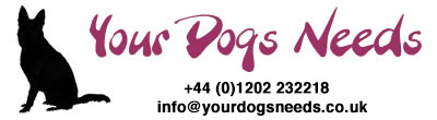 Your Dogs Needs