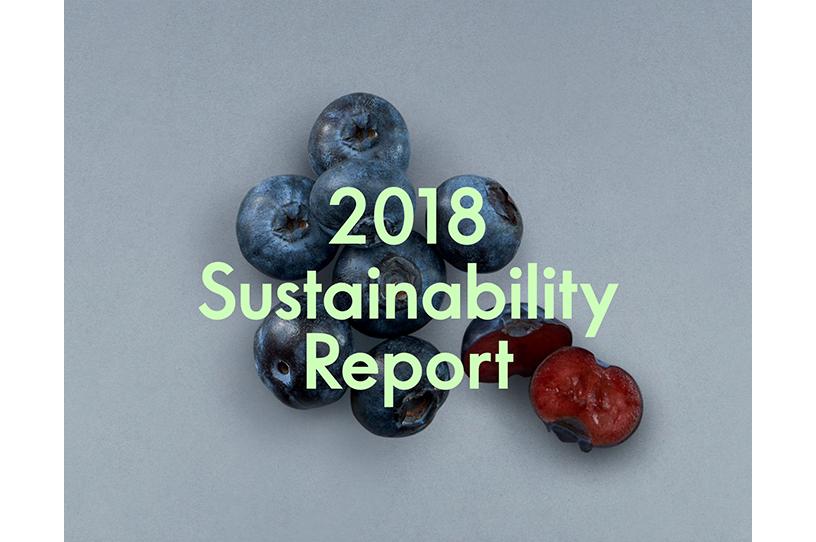 Q1 2019 Interim Report