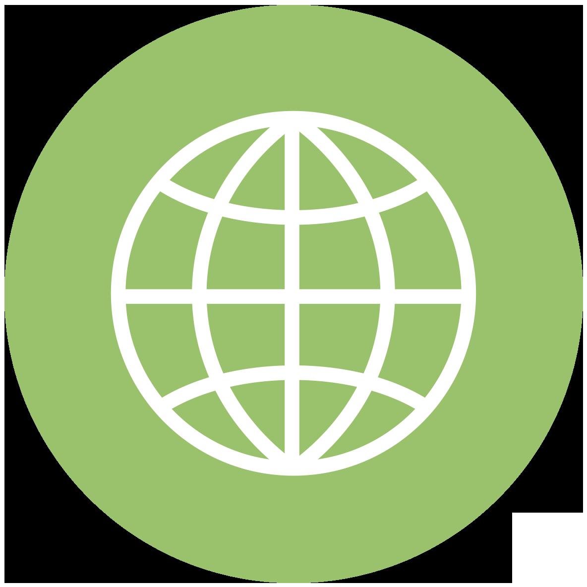 Website icon (green globe)