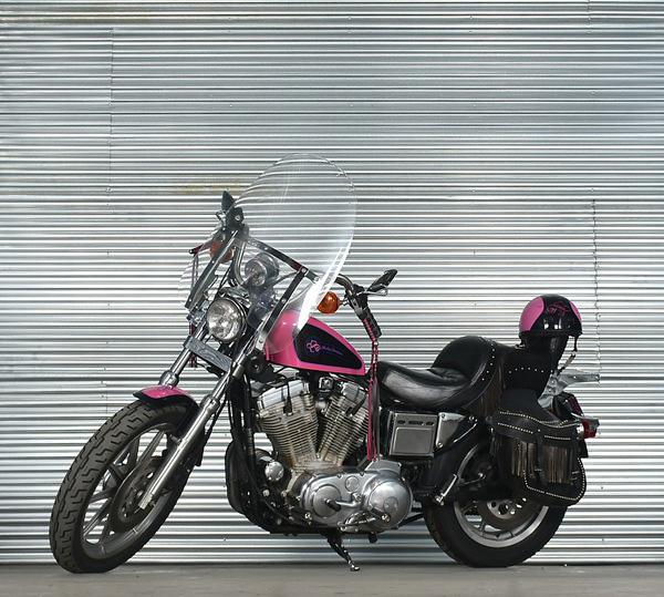 1992 Harley Davidson Screamin' Eagle
