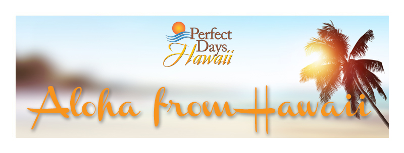 Aloha From Hawaii Newsletter
