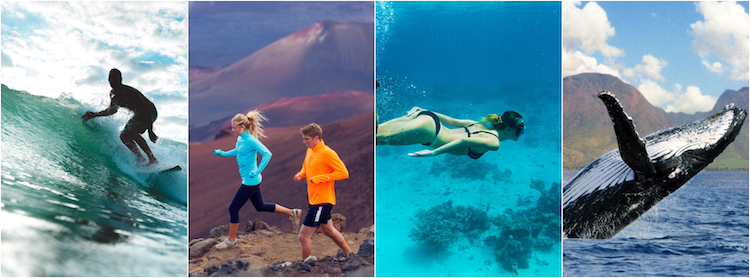 Collage of surfer, hikers, snorkeler, and breaching humpback whale, Maui, Hawaii