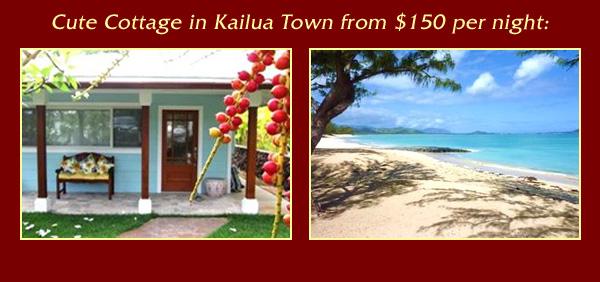 Cute Cottage in Kailua Town