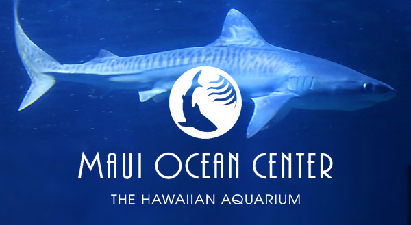 Maui Ocean Center - The Hawaiian Aquarium
