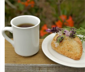 Coffee and Scone with Lavender