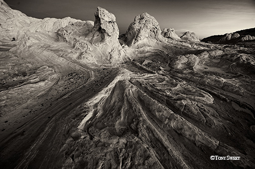 ©2014 Tony Sweet - Landscape