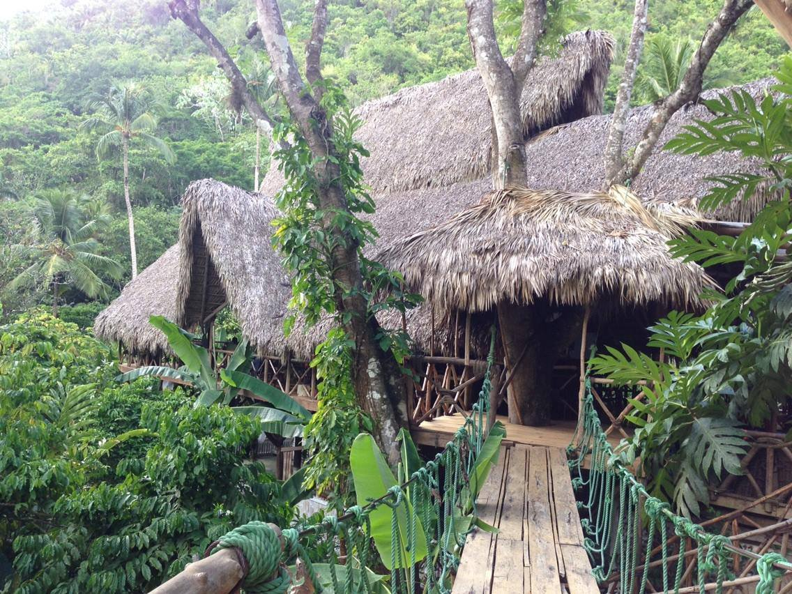 Greetings From a Treehouse in the DR