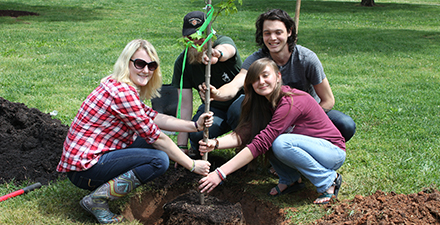 Students planting tree