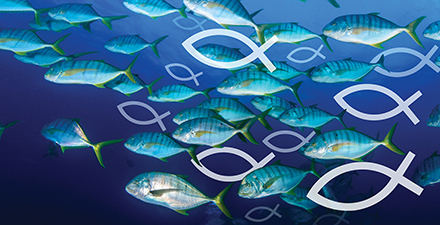 Fish graphic from Drew Crain's book cover