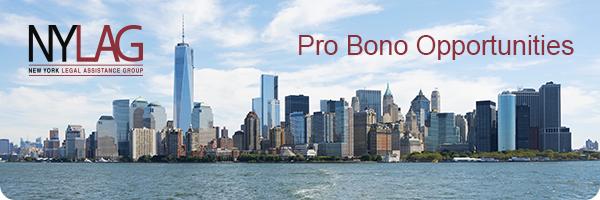 NYLAG Mobile Legal Help Center Pro Bono Opportunities