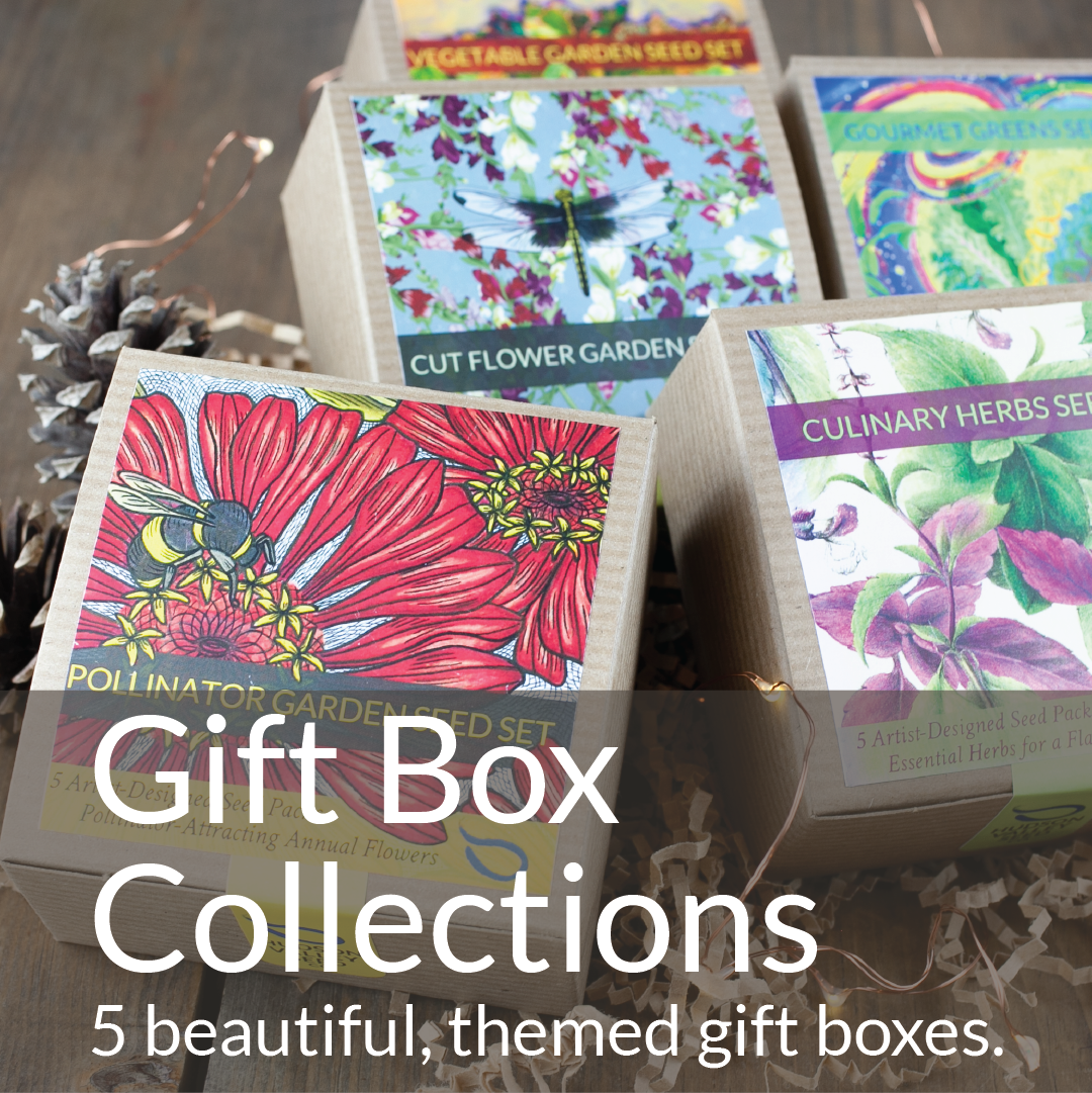Gift Box Collections