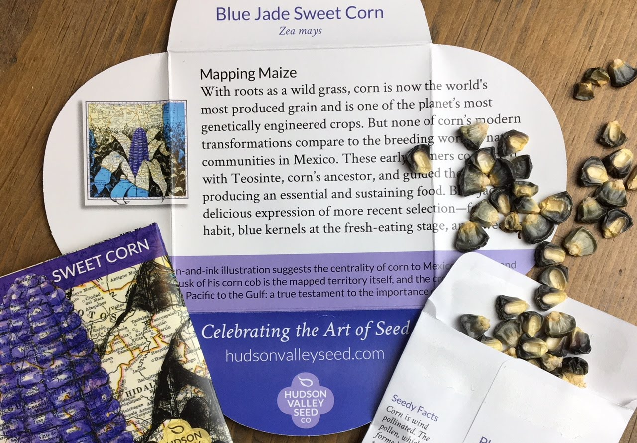 Blue Jade Dwarf Sweetcorn Art Pack