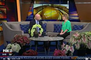 Caladium Interview Fox 13 Tampa