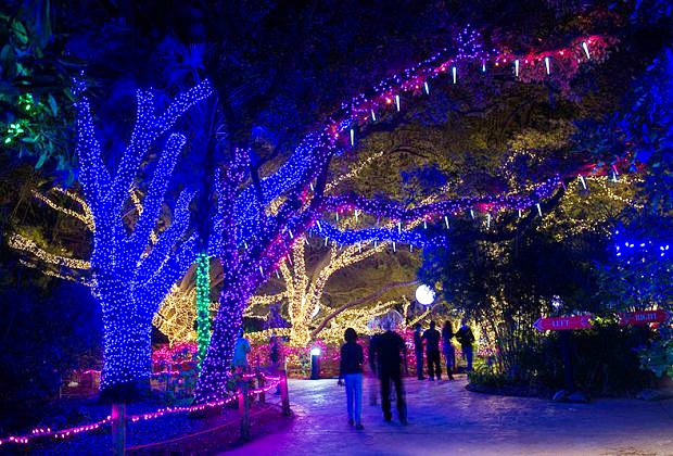The Twinkling of Lights at Colorado's Zoos