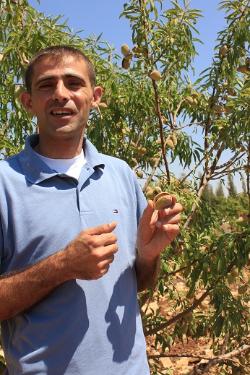 Mohammed Irsheid Olive farmer