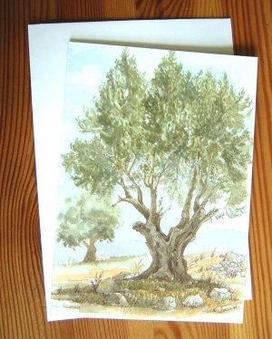Olive Tree Card