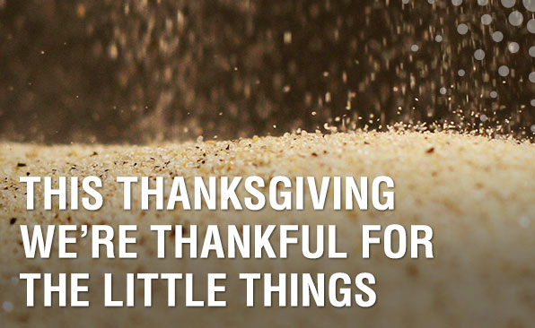 This Thanksgiving we're thankful for the little things.