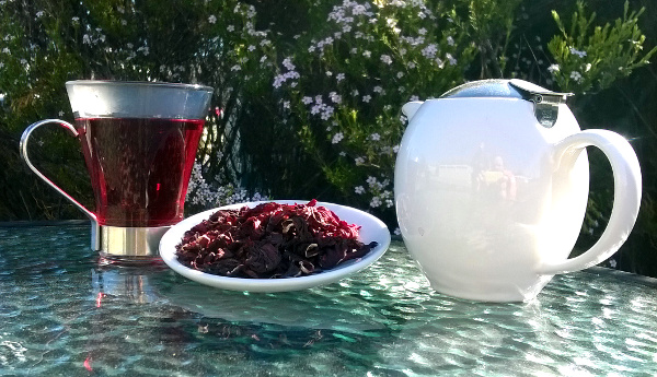 Tea of the Week:- Hibiscus Rosella