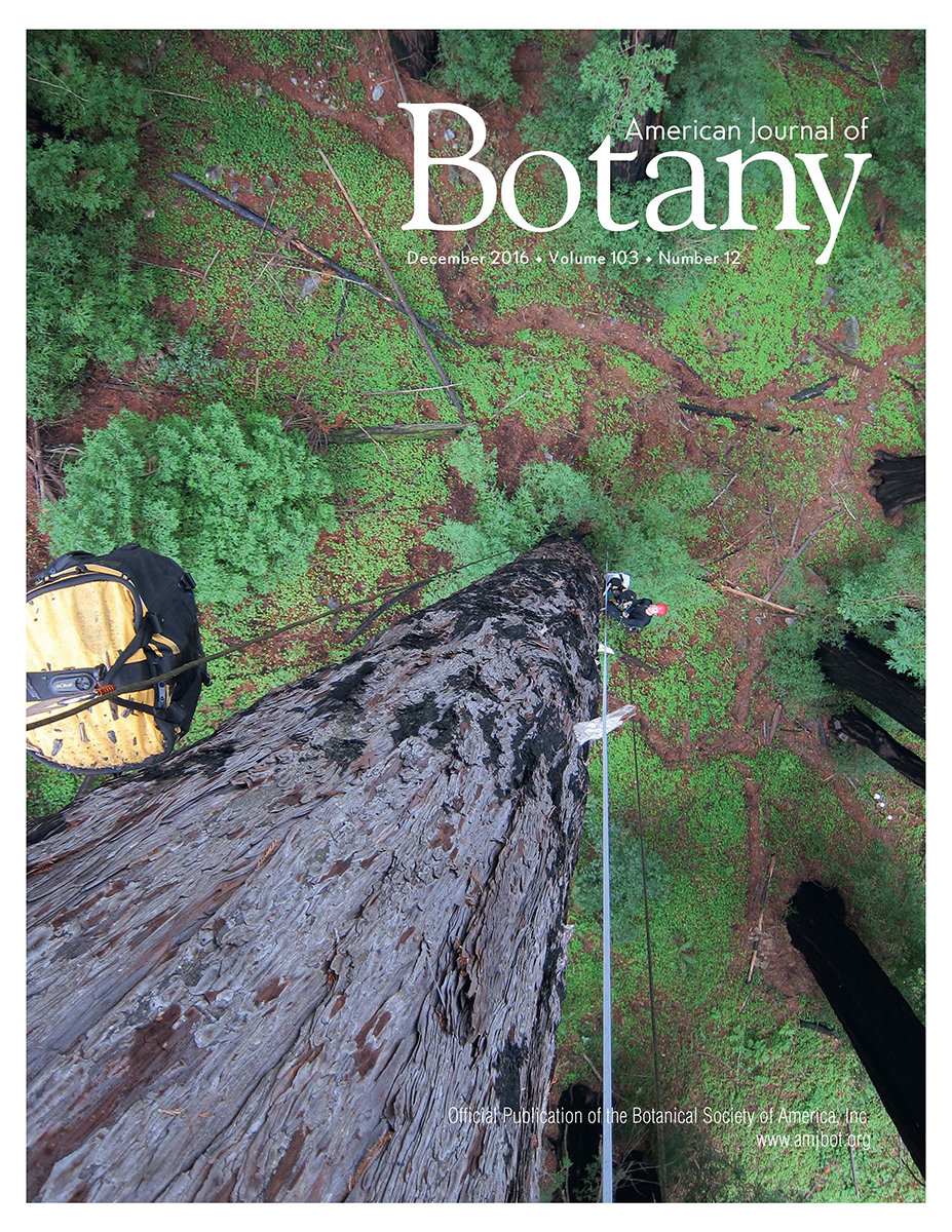 Am J Botany redwood fungi cover