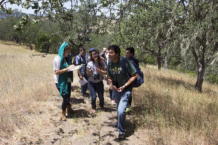 Biology Scholars Program students hike with Paul Fine at Hastings