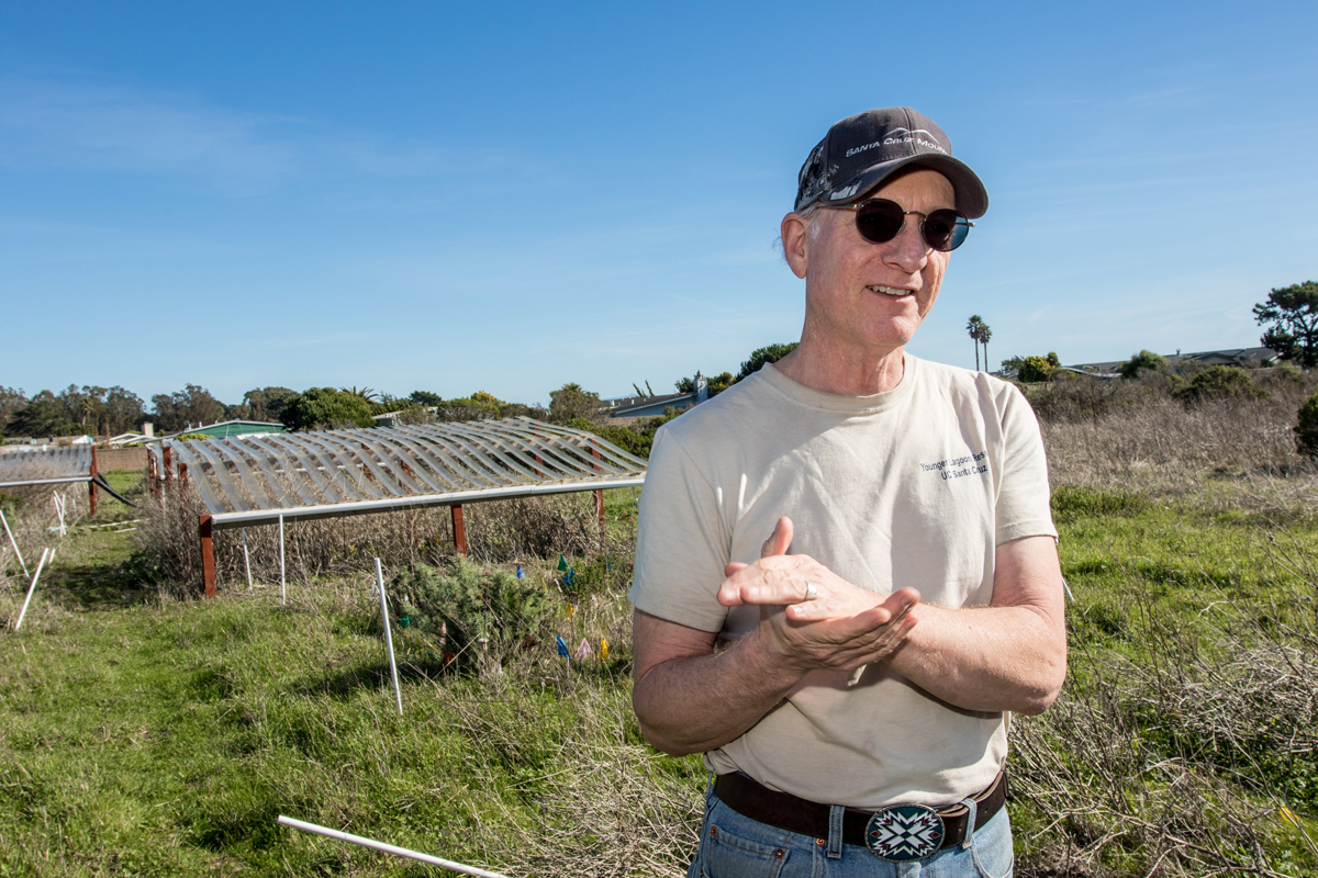 Professor Michael Loik standing in front of the drought shelters on the coastal prairie at Younger Lagoon Reserve