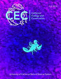 Fall 2018 CEC Research cover