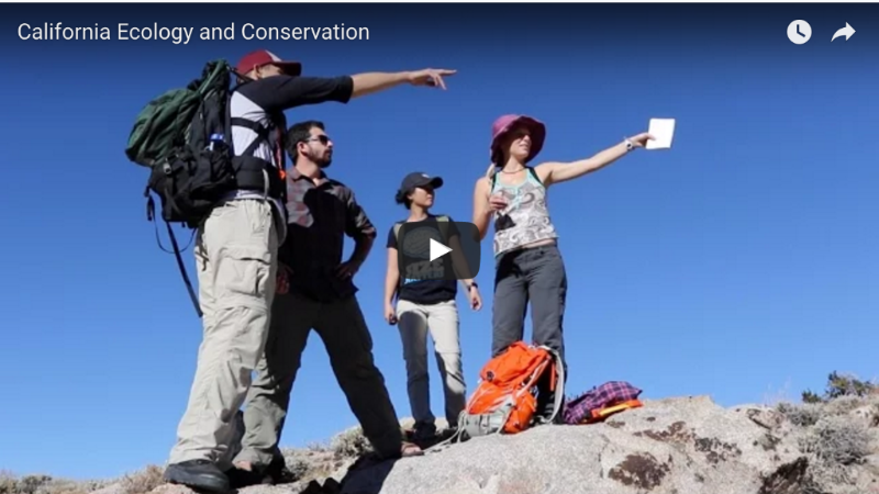 California Ecology and Conservation video pic