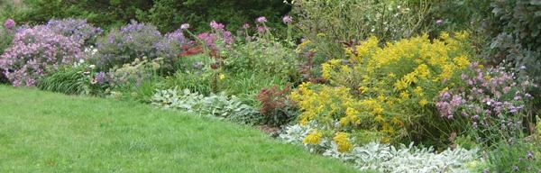 Park Plantings