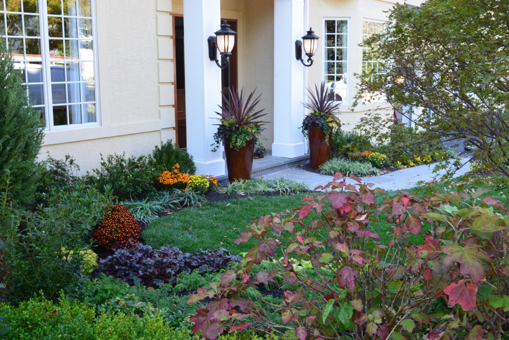 Fall color in front garden