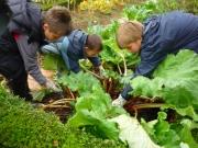 Du bon temps au jardin pendant les mini-strages de jardinage