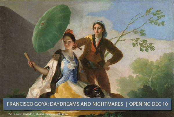 Francisco Goya: Daydreams and Nightmares