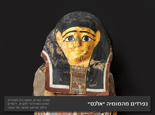 המומיה: סוד החניטה המצרית