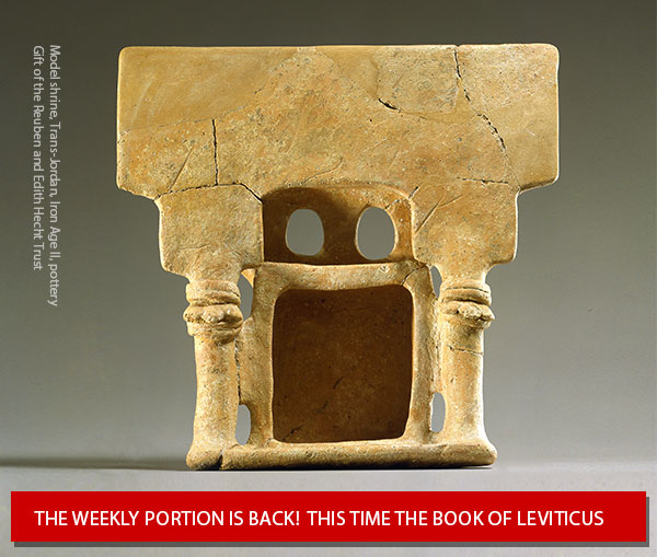 The Weekly Torah Portion is Back