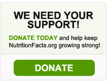 WE NEED YOUR SUPPORT - DONATE NOW!