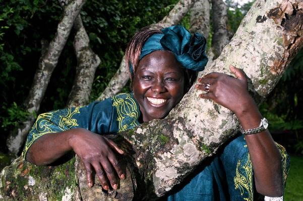 Africa Environment Day/Wangari Maathai Day