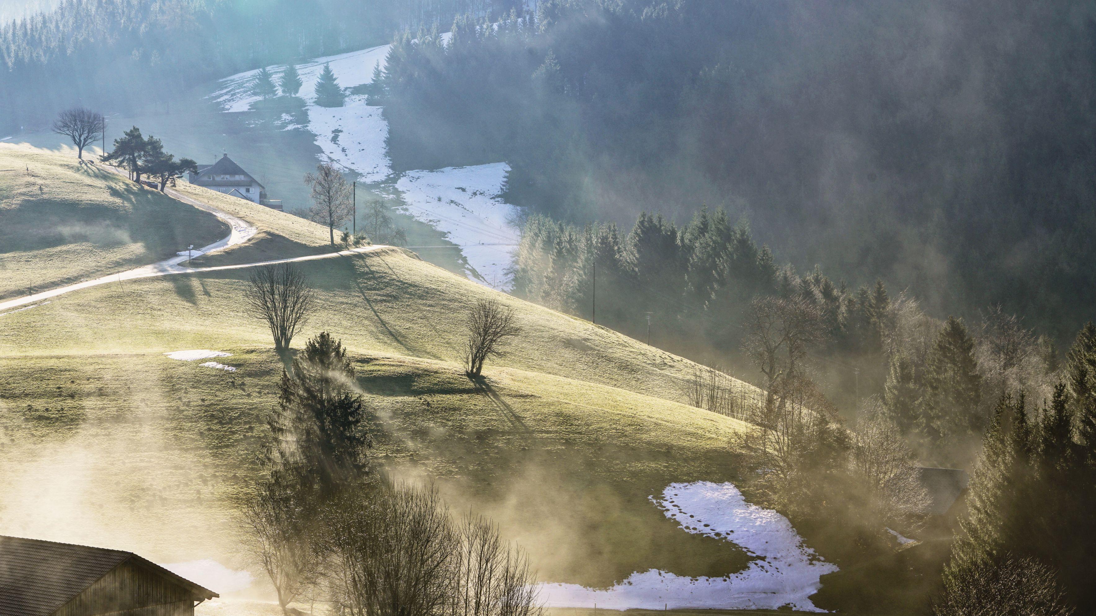 Het Zwarte Woud in Duitsland