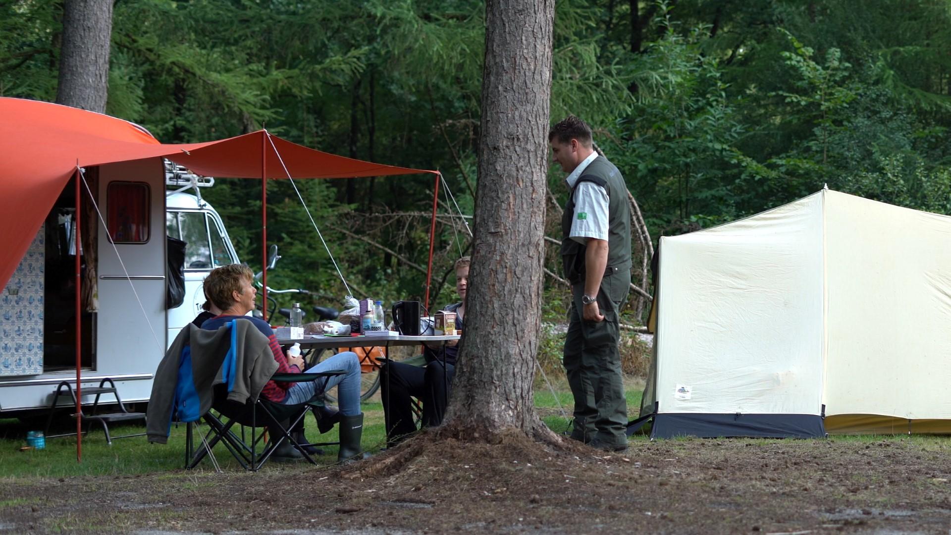 Logeren bij de boswachter - in het bos