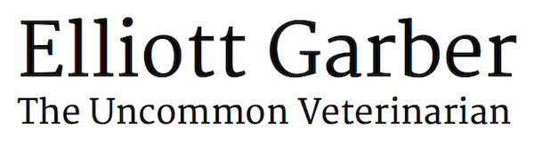 Elliott Garber: The Uncommon Veterinarian