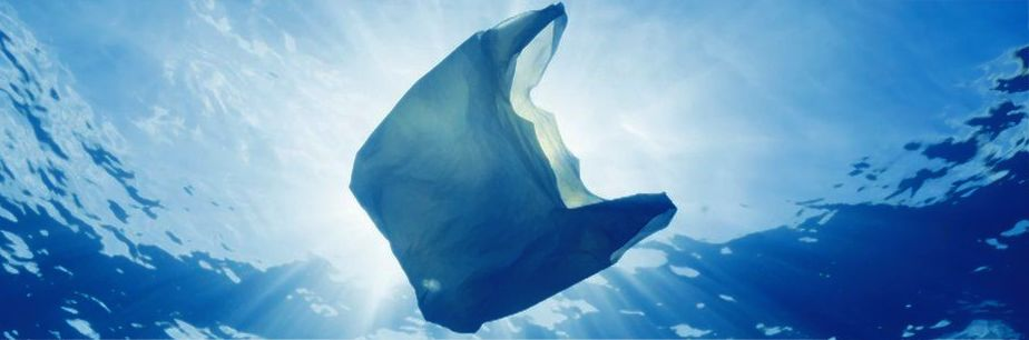 Picture of waste plastic bag floating in sea-water